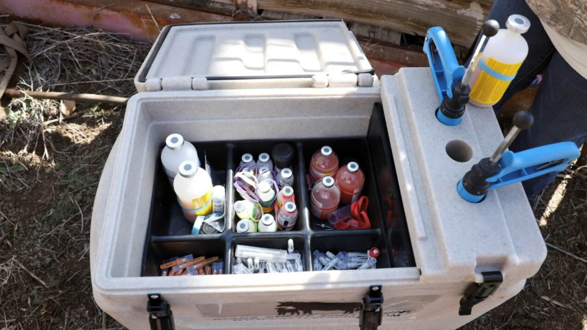 Vaccine Cooler being used